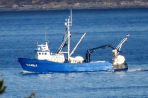 Photo of MARK 1 ship