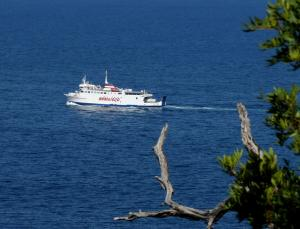 Photo of ISOLA DEL GIGLIO ship