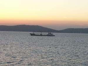 Photo of ANTAKYA ship