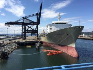 Photo of MATSON PRODUCER ship