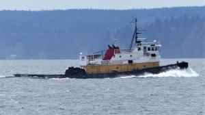 Photo of TUG SEA PRINCE ship