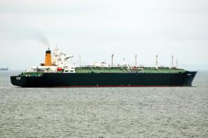 Photo of GALEOMMA ship