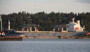 Photo of STARDIEPPE ship
