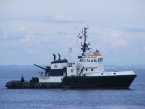Photo of LUNA TUG ship