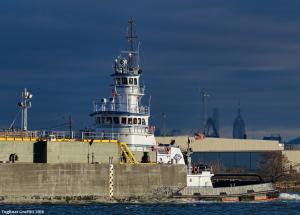 Photo of TASMAN SEA ship