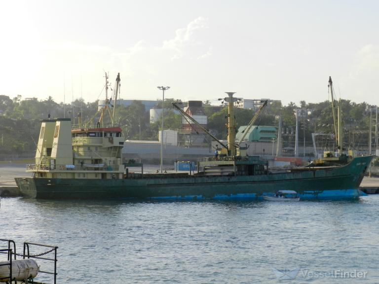 CARIB PALM photo