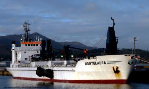 Photo of MONTELAURA ship