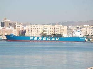 Photo of FESTIVO ship