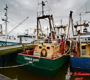 Photo of CORNELIS EVERT ship