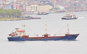 Photo of HACERE ANA ship