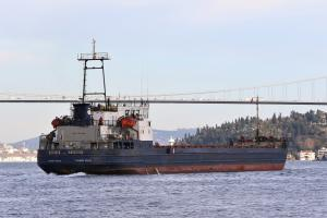 Photo of BATAYSK ship