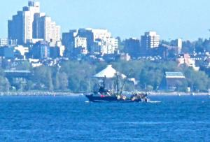 Photo of F/V VIKING STORM ship
