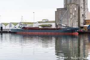 Photo of WIEBKE D ship