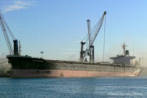 Photo of LOVELY FALCON ship