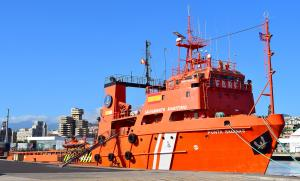 Photo of PUNTA SALINAS ship