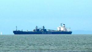 Photo of ISLA DE CEDROS ship