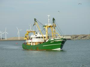 Photo of BELA ship
