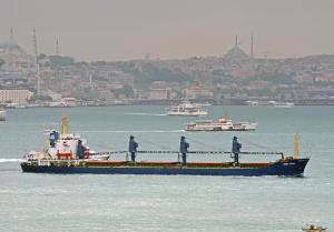 Photo of MEGA STAR ship