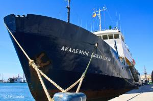 Photo of AK SHOKALSKIY ship