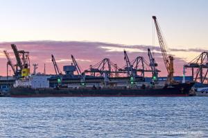 Photo of AMIRA DINA ship