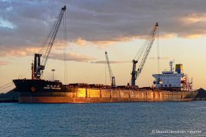 Photo of SKY TREASURE ship