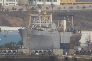 Photo of MARSHAL VASILEVSKIY ship