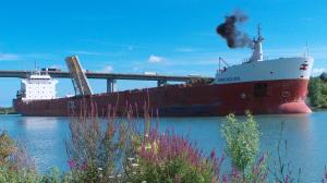Photo of BIRCHGLEN ship