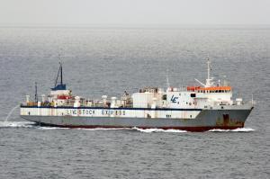 Photo of BUFFALO EXPRESS ship