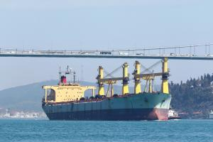 Photo of IRON DESTINY ship