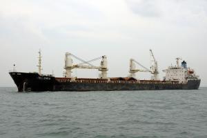 Photo of ANOUSHKA ship