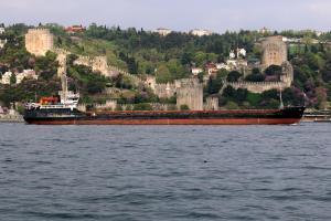 Photo of M/V TUNA ship