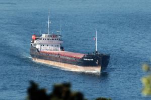 Photo of VOLGO BALT 236 ship
