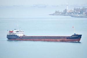 Photo of VOLGO-BALT-241 ship