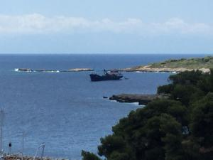 Photo of ZENITH VOLOU ship