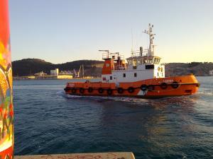 Photo of SOZINA ship