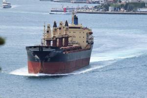 Photo of UNI-BROTHERS ship