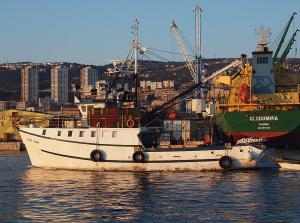 Photo of ADRIA JEDAN ship