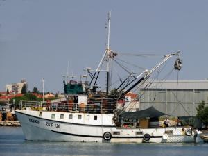 Photo of DINKO ship