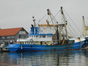 Photo of TX29 HELENA ELIZABET ship
