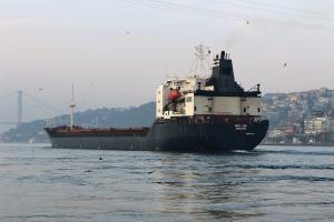 Photo of MARYLAND ship