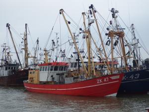 Photo of ZK47 PIETER JOHANNES ship