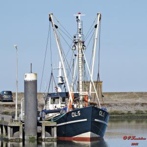Photo of YE-78 MARGARETHA ship