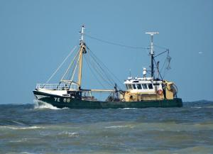 Photo of YE88 IDA ship
