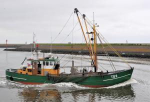 Photo of TS-9 TRIX ship