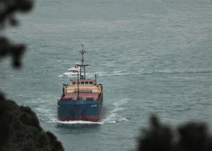 Photo of NS UNION ship