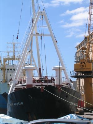 Photo of DANICA RAINBOW ship