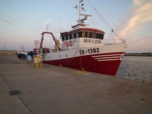 Photo of MIKADON ship