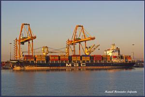 Photo of MSC NICOLE ship