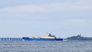 Photo of BALTIC FORWARD ship