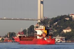 Photo of MAPLE ship